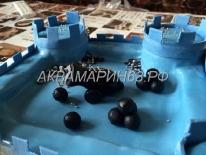 Торт - крепость