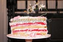 Торт в разрезе